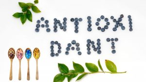 best antioxidant supplement